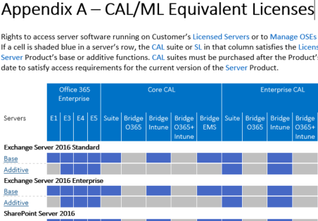 Office 365 Business Plans and on-premise Server access